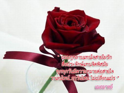 35-20090130105201.jpg